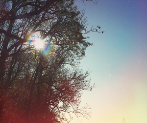 autumn, blue sky, and nature image