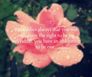 individuality, pink, and flower image