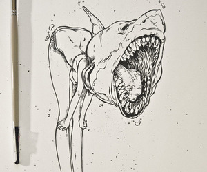 draw, shark, and girl image