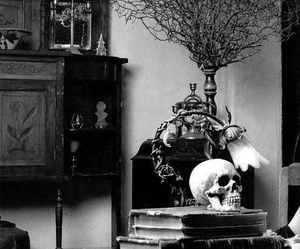 skull, gothic, and books image
