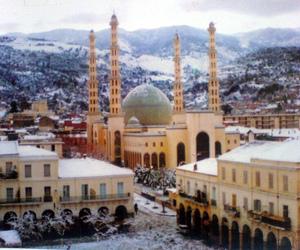 Algeria, mosque, and nature image