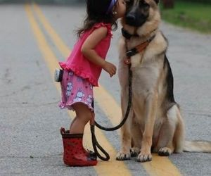 dog, kiss, and animal image