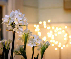 flowers, light, and pretty image