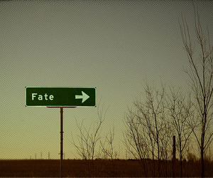 fate, sign, and text image