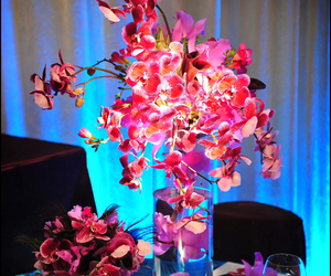 beautiful, flowers, and orchids image