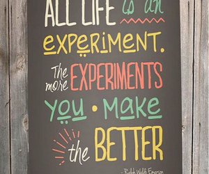 quote, experiment, and life image