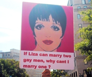 gay, gay rights, and liza minelli image