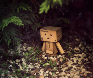 danbo and danboard image
