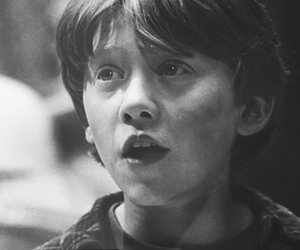 harry potter, black and white, and rupert grint image