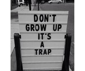 trap, grow up, and true image