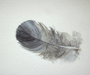 art, feather, and cute image