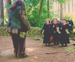 harry potter, ron, and the golden trio image