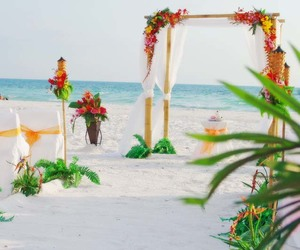 beach, ceremony, and wedding image