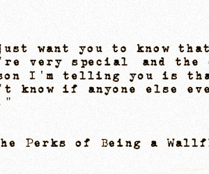 being, perks, and wallflower image
