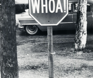 black and white, whoa, and sign image