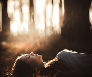 light, sun, and forest image