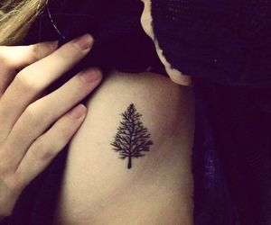 nature, pine, and tatto image