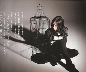 japanese, yasu, and acid black cherry image