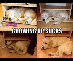 aw, growing up, and lol image