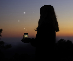 fireflies and sunset image