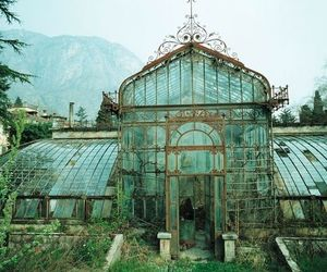 abandoned, beautiful, and greenhouse image