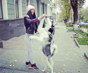 girl, dog, and husky image