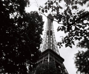eiffel tower, photography, and france image