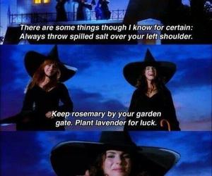 love it and Practical Magic image
