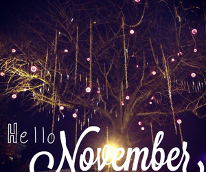 november, hello, and light image