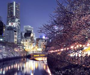 japon, seul, and stars image