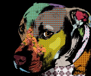 animal, art, and pop art image
