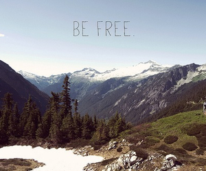 be free, free, and love image