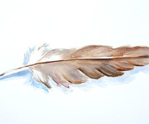 feather and watercolour image