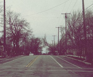 lovely, road, and trees image