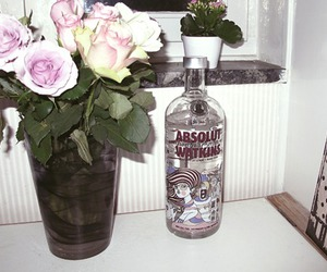 absolut vodka, alcohol, and totalhappiness image