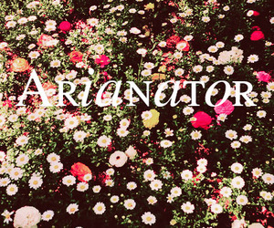 forever and arianator image