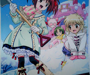 winter and tokyo mew mew image