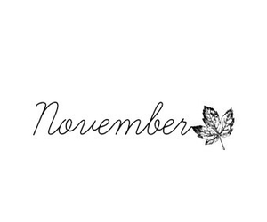 november, leaves, and autumn image