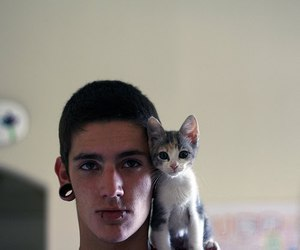 boy, cat, and piercing image