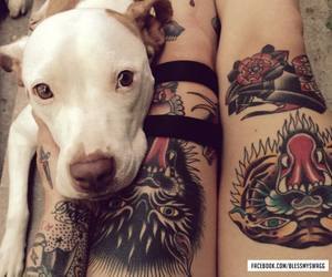 beauty, dog, and gold image