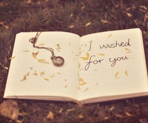 wish, quote, and book image