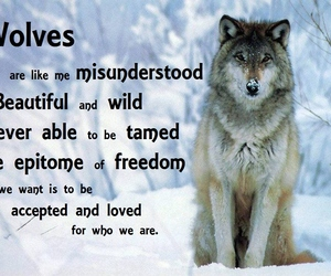 wolf and quotes image