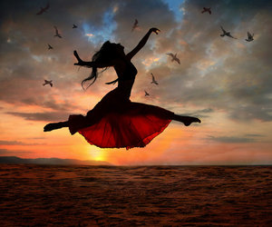 bird, dance, and sunset image