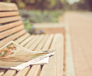 bench, newspaper, and photography image
