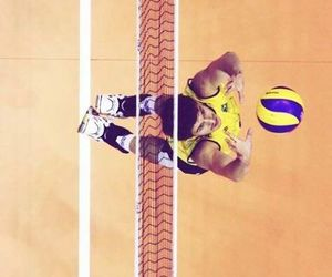 athlete, brazil, and sports image