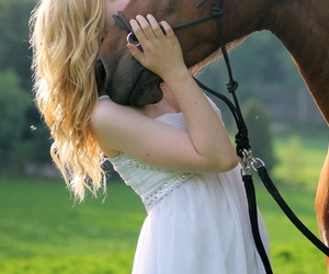curls, horse, and pony image