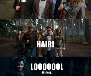 hair, harry potter, and lol image