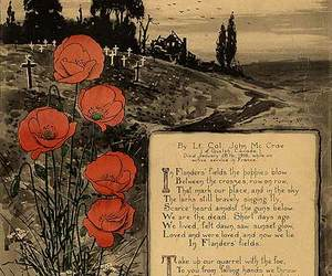 remembrance day and rememberance day image