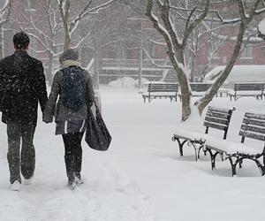 snow and walk image