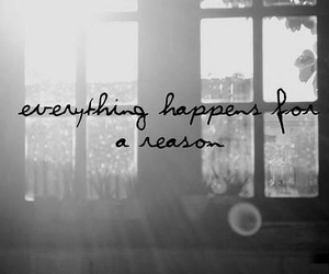 everything, reason, and think image